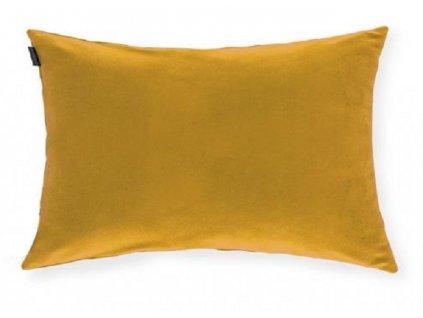 polenta mostaza 01