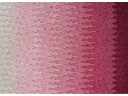 acacia pink 01