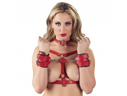 bad kitty harness set red img INSP 20183 fd 3