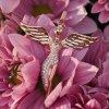 ERP ANGEL R 1