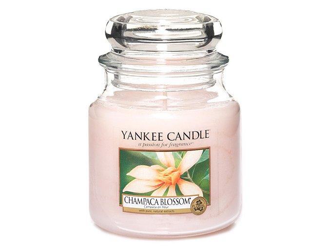 Vonná svíčka ve skleněné dóze Květ magnólie champaca - Champaca Blossom, 411 g