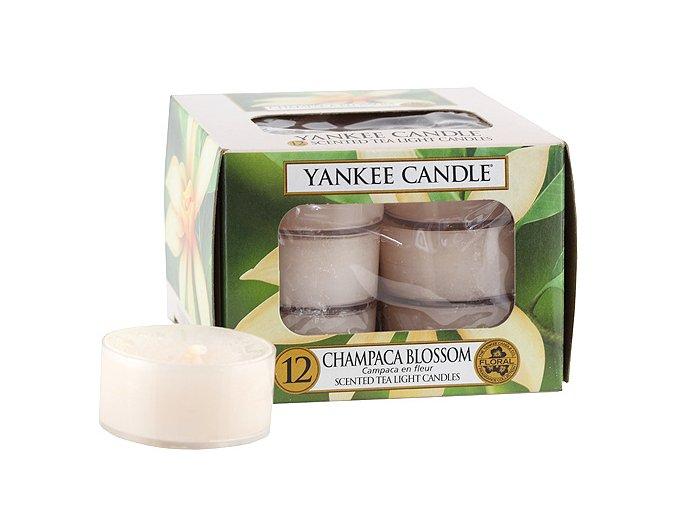 Yankee Candle Čajová svíčka Květ magnólie (Champaca Blossom), 12 ks