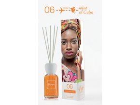 Aroma difuzér Mr & Mrs Easy - Menta Agrumata (Pomeranč a máta) 250 ml