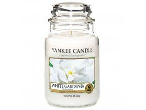 Vonná svíčka ve skleněné dóze Bílá gardénie - White Gardenia, 623 g