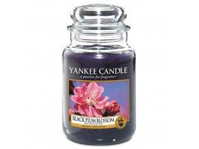 Vonná svíčka ve skleněné dóze Květ černé švestky -  Black Plum Blossom, 623 g