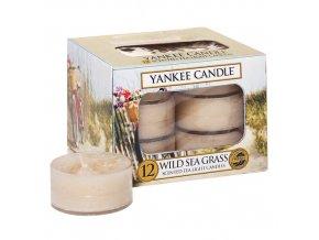 Čajová svíčka Tráva na pobřeží - Wild sea grass, 12 ks