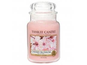 Vonná svíčka ve skleněné dóze Třešňový květ Cherry Blossom, 623 g