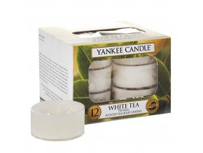 Čajová svíčka Yankee Candle Bílý čaj White tea, 12 ks