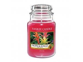 Vonná svíčka ve skleněné dóze Tropická džungle TROPICAL JUNGLE, 623 g