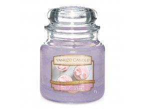Vonná svíčka ve skleněné dóze Sladká ranní růže SWEET MORNING ROSE, 411 g