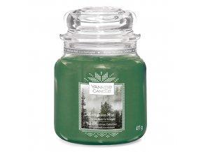Vonná svíčka ve skleněné dóze Lesní mlha Evergreen Mist, 411 g