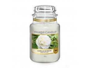 Vonná svíčka ve skleněné dóze Květ kamélie Camellia Blossom, 623 g