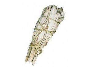 Šalvěj bílá svazek pro vykuřování, 10 cm, 1 ks