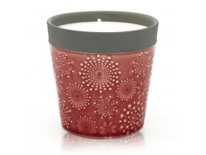 Sojová vonná svíčka Popínavá Růže, 650 g