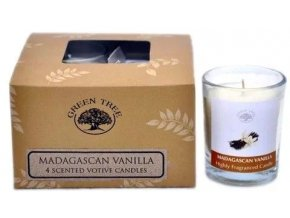 Green Tree Madgascan Vanilla Votivní vonné svíčky Dárkové balení, 4 ks