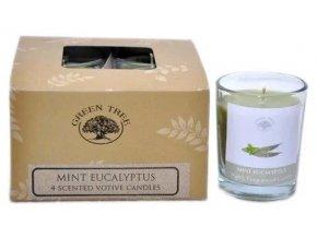 Green Tree Mint Eucalyptus Votivní vonné svíčky Dárkové balení, 4 ks