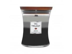 WoodWick Trilogy Warm Woods (Hřejivé dřevo) Vonná svíčka s dřevěným knotem, 275 g
