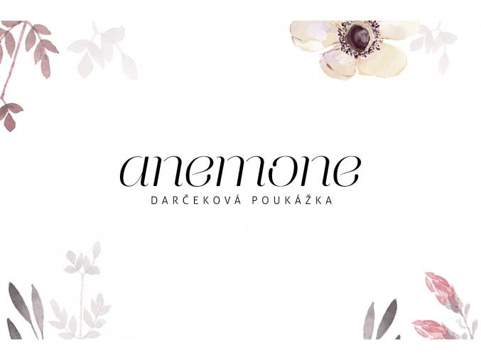 anemone poukazka 02