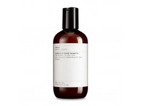 evolve superfood shine natural shampoo prirodny sampon superfood shine 250 ml