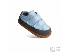 baro blue 486