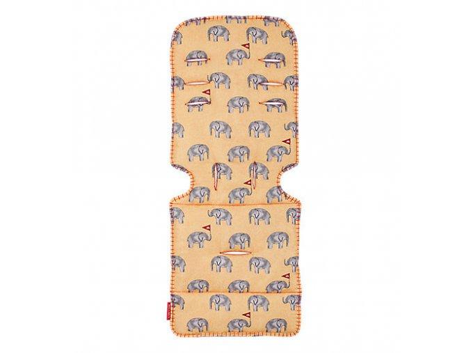 AM1Y031912 liner elephants BG