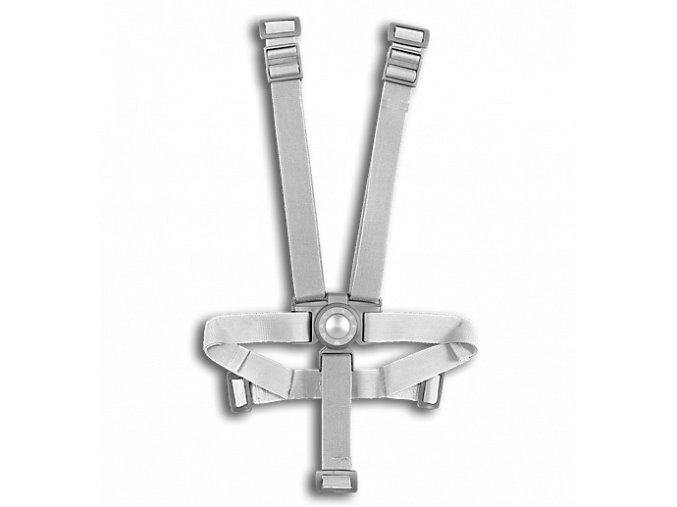 PP1G440192 harness silver CBH