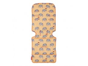 AM1Y031912 liner elephants BG