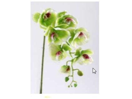 Umělá květina - Orchidea zelená