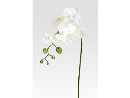Umělá květina - Orchidea bílá