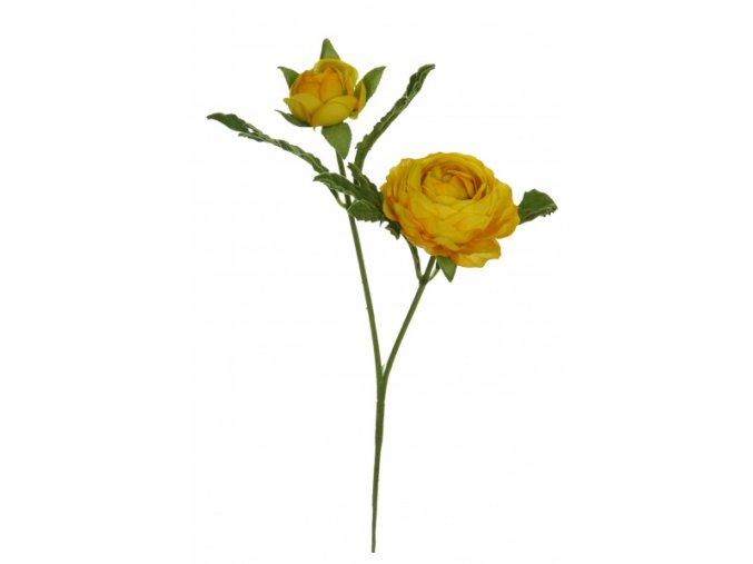 Pryskyřník malý žlutý YEL