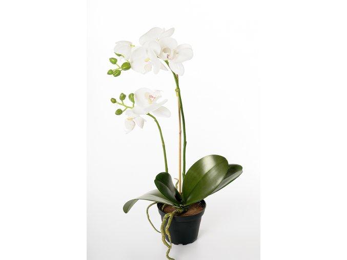 umela-kvetina-orchidea-v-kvetinaci-bila-45cm