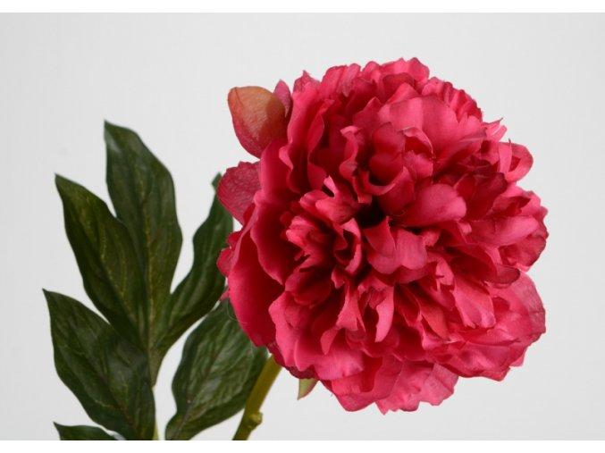 Umělá květina - Pivoňka bordó