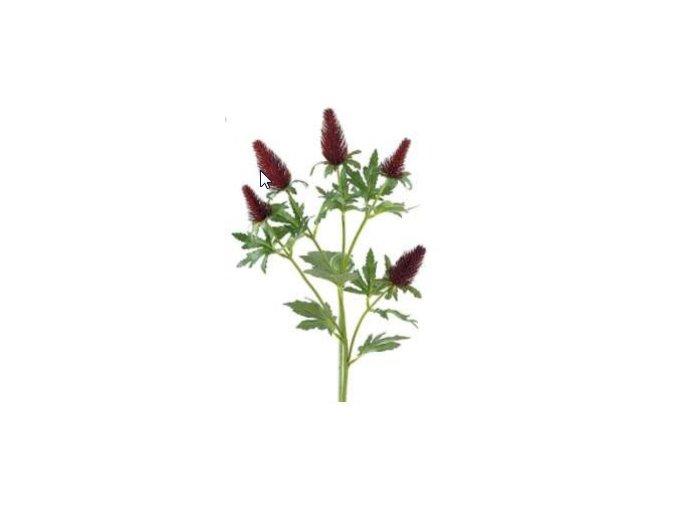 Umělá květina - Bodlák bordo