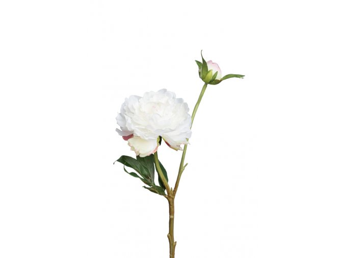 umela-kvetina-pivonka-bila-s-poupetem-35cm