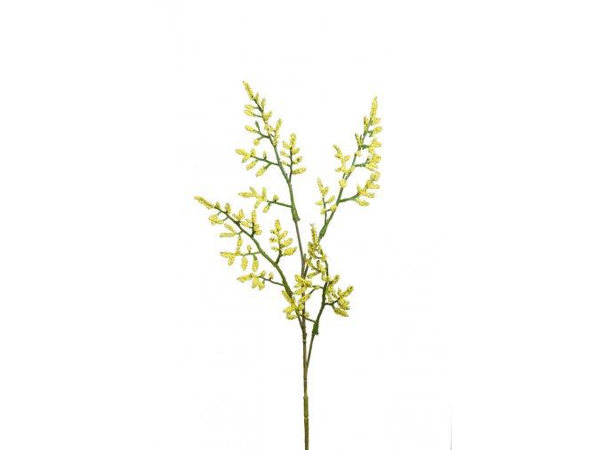 umela-kvetina-limonium-statice-zluta