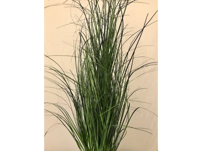 Umělá rostlina  - Tráva 110cm