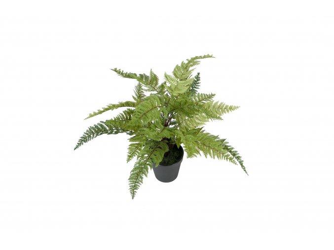 Umělá rostlina - Kapradina v květináči