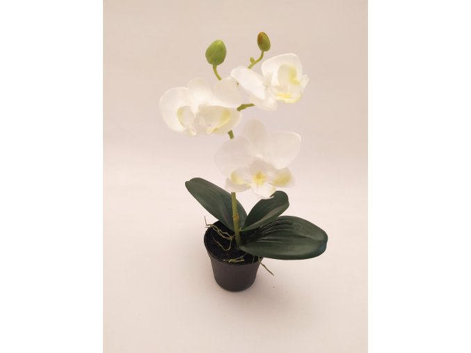 umela-rostlina-orchidea-mini-bila-23cm