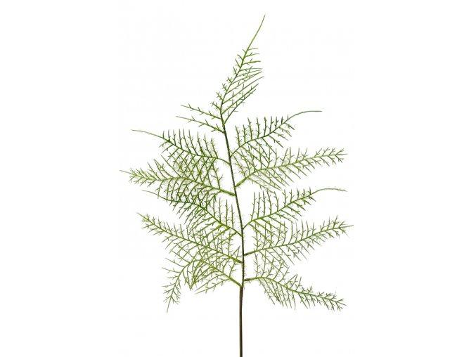 umela-dekorace-asparagus-vetvicka-60cm