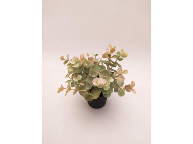 umela-dekorace-eukalypt-v-kvetinaci-ii-