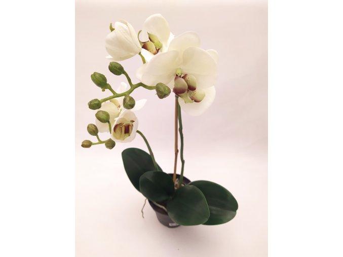 umela-dekorace-orchidea-v-kvetinaci-bilo-zelena-45cm