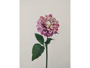 umela-kvetina-jirina-bordo-zasnezena