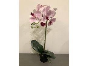 umela-kvetina-orchidea-ruzova-v-kvetinaci-60cm
