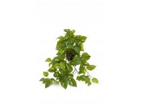 umela-rostlina-vodenka-plaziva-v-kvetinaci-55-cm
