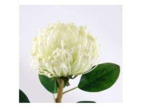 Umělá květina - Africká protea bílá