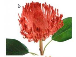 Umělá květina - Africká protea červená