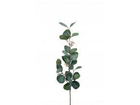 Umělá květina - Eukalyptus velkolistý