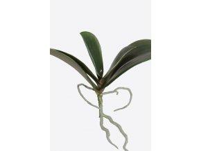 Umělá květina / Orchidej listy