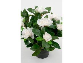 Umělá květina - Gardenia bílá květina