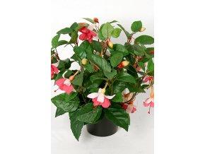 Umela-rostlina-fuchsia-kerik
